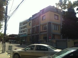 photo 2 (1)